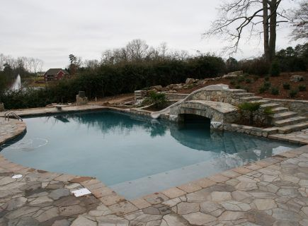 Luxury Backyard Freeform Pool