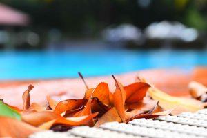 Pool maintenance - water circulation